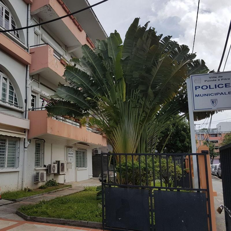 Police municipale - Centre José Marty